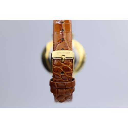 Creative Women''s Brown Watch - Leather SP93470L-5