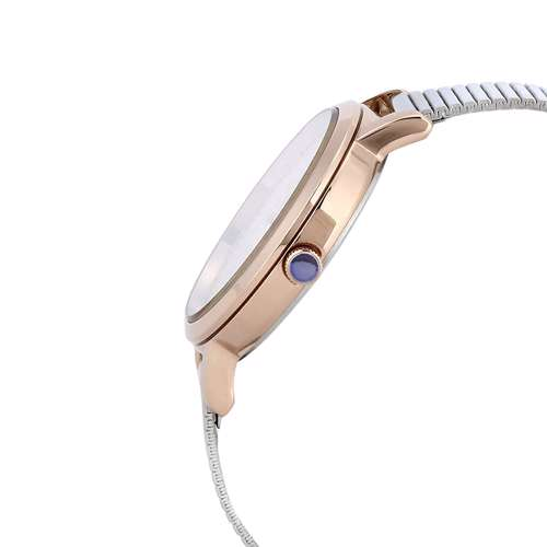 Stainless Steel Womens''s Silver Watch - DK.1.12267-4