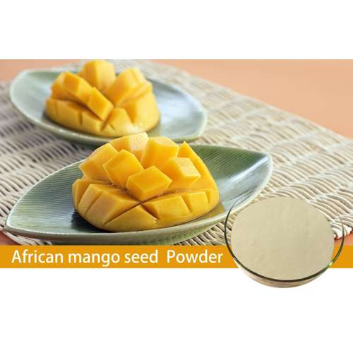 Mango Fruit Powder (4x200g)