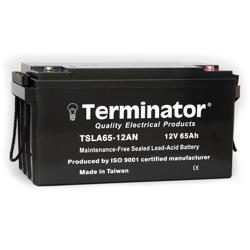 Terminator SLA Battery 12V-65Ah (Taiwan)