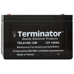 Terminator SLA Battery 12V-100Ah (Taiwan)