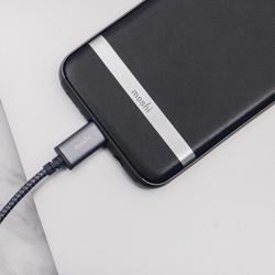 MOSHI Integra USB-C To USB-A Charge / Sync Cable Titanium Gray