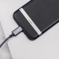 MOSHI Integra USB-C To USB-A Charge / Sync Cable Titanium Gray