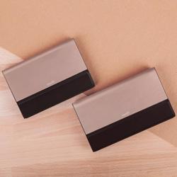 MOSHI IONBANK 10,000 mAh Portable Battery- Sunset Bronze