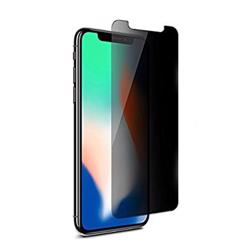 PANZERGLASS Privacy For iPhone XS/X
