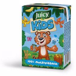 Juicy Kids 100% Multivitamin Juice 200 ml