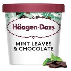 Haagen Daz Pint Chocolate Mint Ice cream 460ml