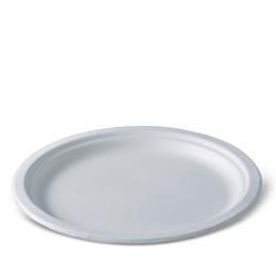 Detpak Bio Based Bagasse Plate