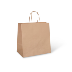 Detpak Brown Paper Take Away Bag With Twisted Handle
