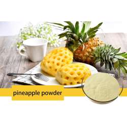 Pineapple Fruit Powder (4x200g)