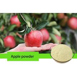Apple Fruit Powder (4x200g) preview