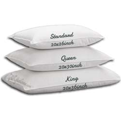 Hungarian Goose Silver Line Down Pillow 2Pcs Queen Size 20x30 inch Soft 23oz