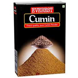 Everest Cumin Powder (24x500g)